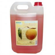 Ewol Professional SD Apricot 5 L