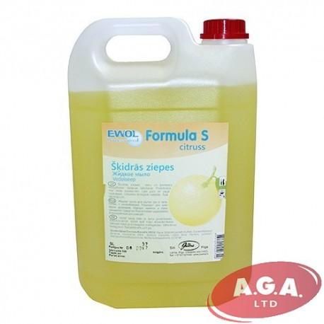 Ewol 5 L Professional Formula S Citruss